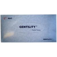 Facial Tissue 100sheets 2ply 20x19cm 48boxes/ctn